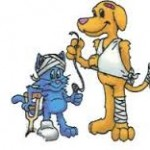 Pet First Aid Awareness, A Leash Above, pet sitting, The Woodlands, Imperial Oaks, Oak Ridge North,